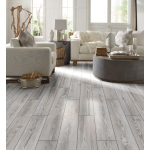 Traditions-Platinum | Bay Country Floors