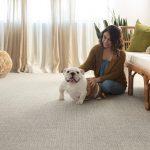 Briarwood-D carpet | Baycountryfloors