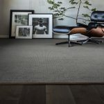 Pawstruck-Portland Carpet | Bay Country Floors