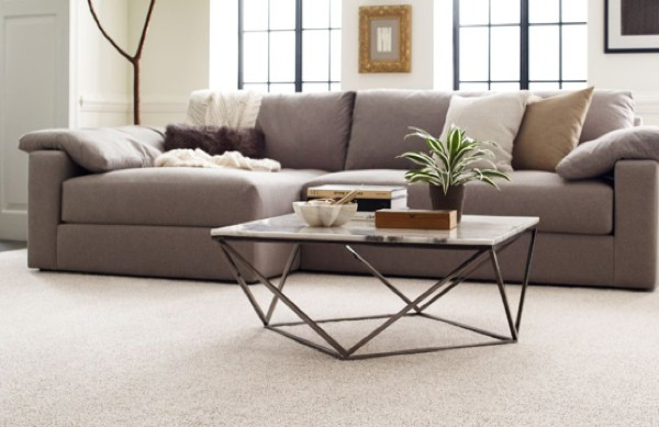 Carpet flooring in living room | baycountryfloors