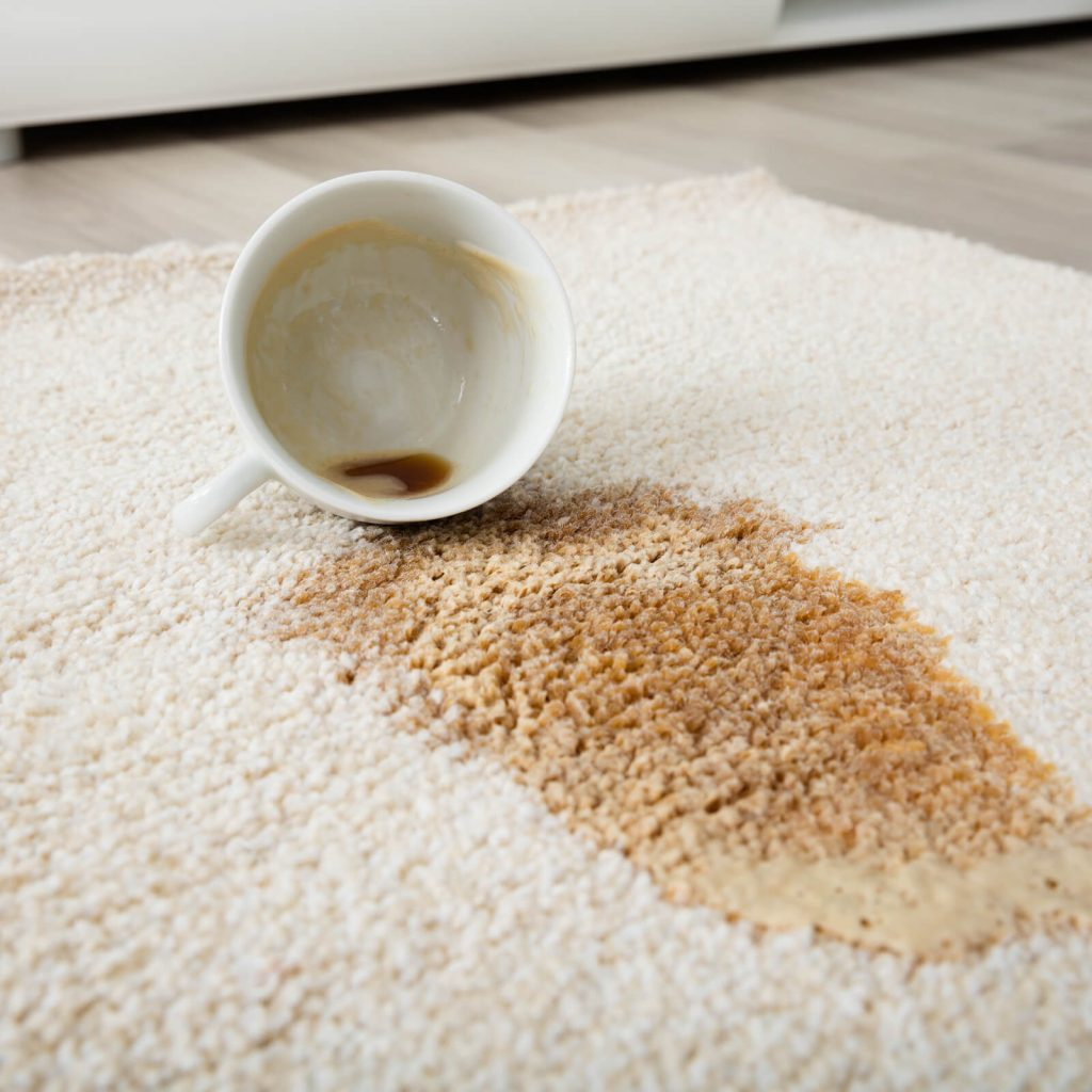 Professional Rug Cleaning | Bay Country Floors